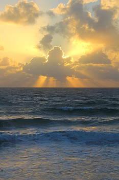 Florida Sunrise 1 by Lindsey Cockrum