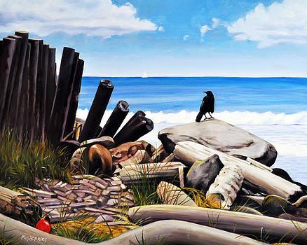 Flotsam and Jetsam by Phil Hopkins