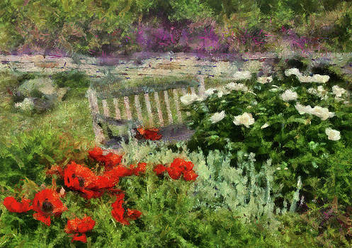 Mike Savad - Flower - Poppy - Poppies