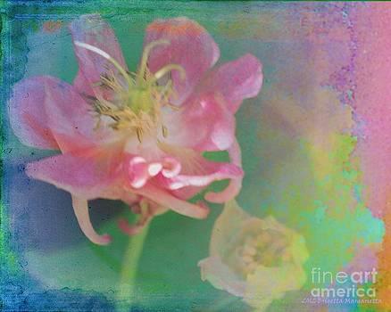 Flower Children by Brigetta  Margarietta