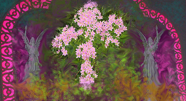 Anne Cameron Cutri - Flower Cross Fancy