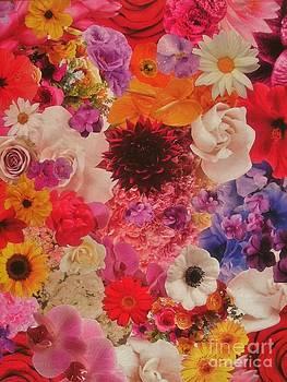 Flower Explosion by Rachel Dunkin