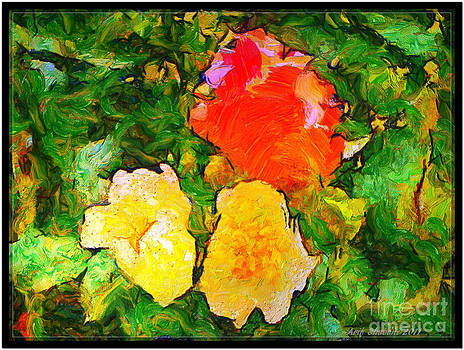 Flower from my garden 06A by Arif Zenun Shabani