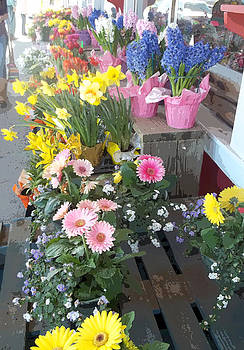 Anne Cameron Cutri - Flower Vendor