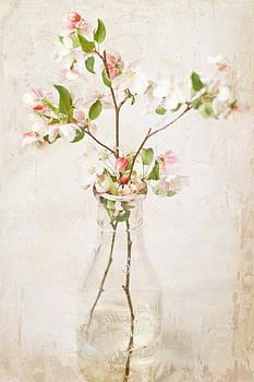 Flowering Crabapple by Cheryl McCain