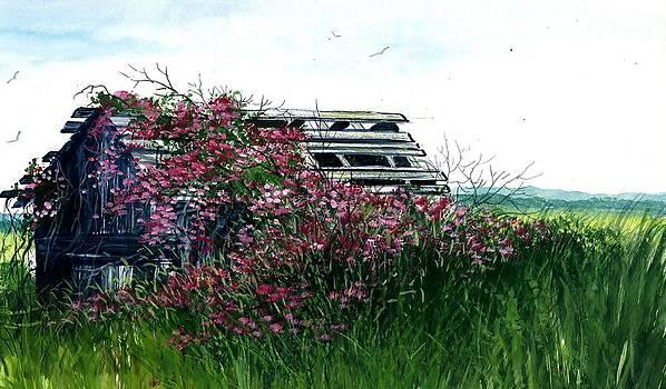 Flowers Over Barn by Steven W Schultz