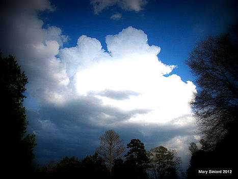 Fluffy Clouds by Mary Siniard