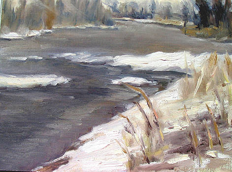 Flurries Today by Patricia Seitz