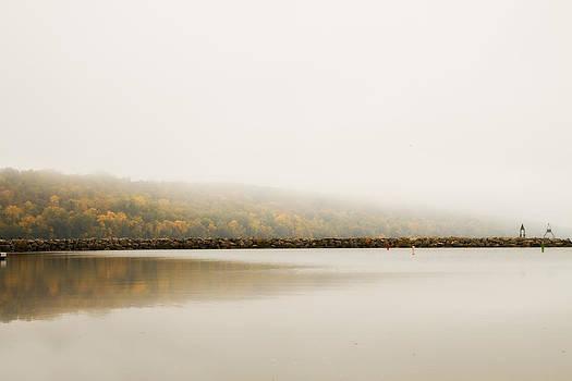 Foggy Autumn Morning by Joel Witmeyer