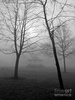Foggy Morning in the Park by Karin Ubeleis-Jones