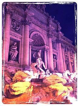 Fontana Di Trevi by Shelley Smith
