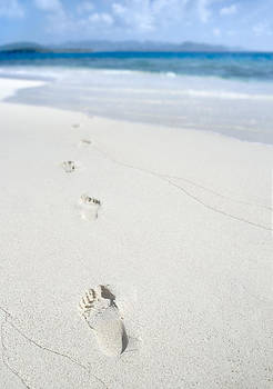 Footprints on a tropical beach.  by Bryan Allen