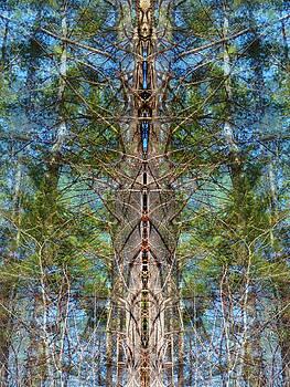 Forest Chakras by Lynzi Wildheart