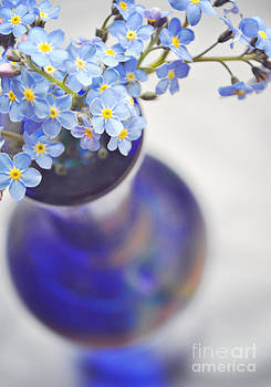 Forget me nots in deep blue vase by Lyn Randle