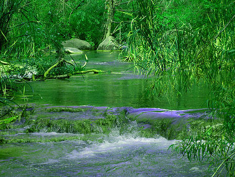 Fossil Creek Flow by Wayne  Ligon