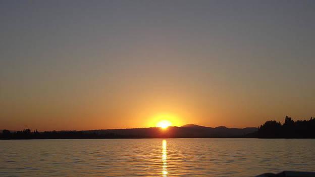 Foster View Sun Set by Sheila Renfro