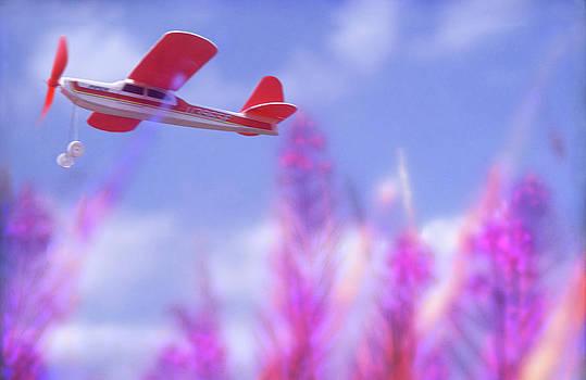 Free Flight by Richard Piper