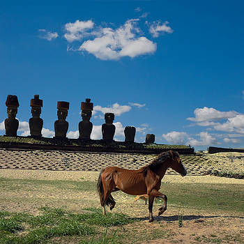 Freedom In Rapa Nui by Amateur photographer, still learning...