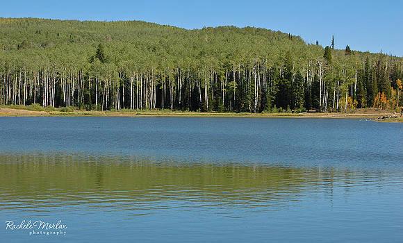 Freeman Reservoir by Rachele Morlan