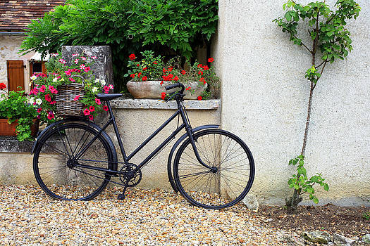 French Bike by Pauline Cutler