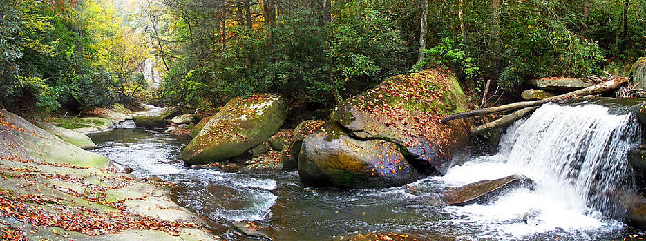 French Broad Waterfall in the Fall 4 near Balsam Grove NC by Duane McCullough