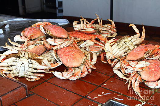 Wingsdomain Art and Photography - Fresh Cooked Crabs At Fishermans Wharf . San Francisco California . 7D14459