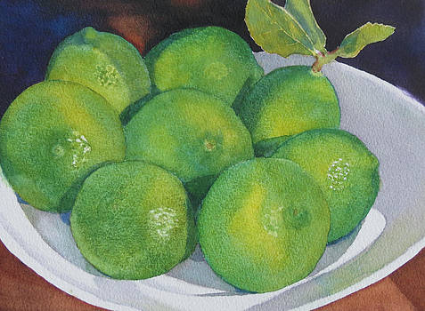 Fresh Limes by Judy Mercer