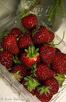 Anne Babineau - fresh strawberries