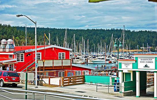 Friday Harbor by Randall Templeton