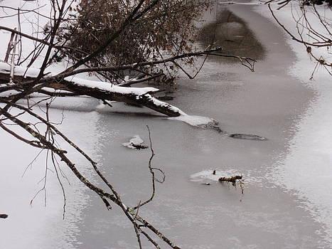 Frozen Stream by Ivana Smiljanec