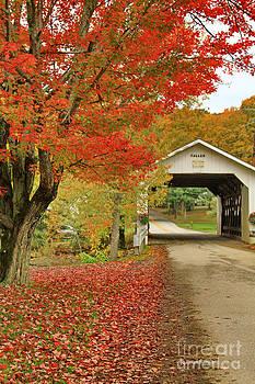 Deborah Benoit - Fuller Bridge