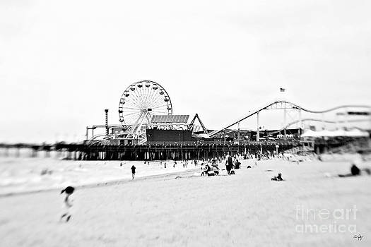Scott Pellegrin - Fun at the Beach