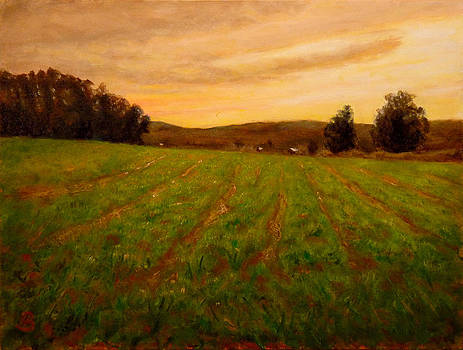 Furrowed Field by Joe Bergholm