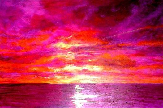 Fushia Sunset by Marie-Line Vasseur