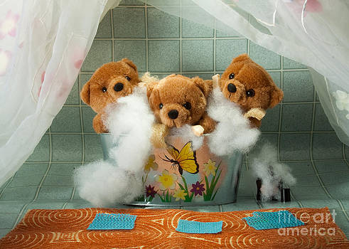 Fuzzy Bears 5 by Dinah Anaya