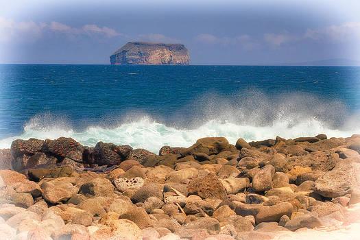 Galapagos Surf by Ecuador Images