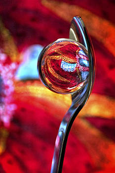 Skip Hunt - Ganesh Spoon
