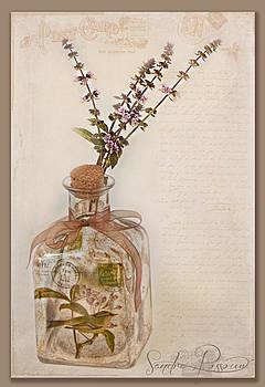 Garden Note  by Sandra Rossouw