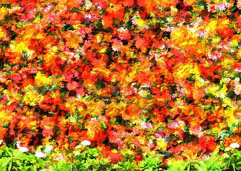 Robert Matson - Gardening