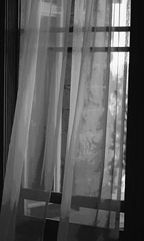 Marilyn Wilson - Gentle Breeze - BW