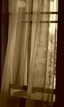Marilyn Wilson - Gentle Breeze in Sepia