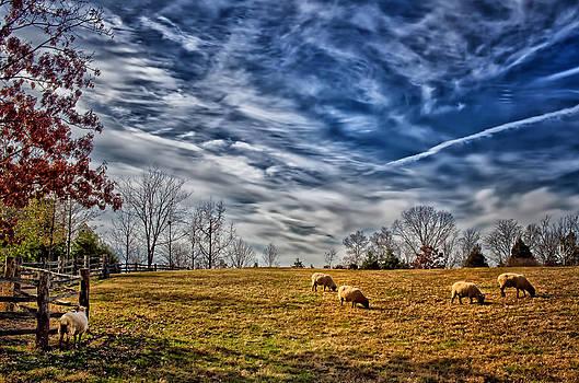 George Washington's Farm by Boyd Alexander