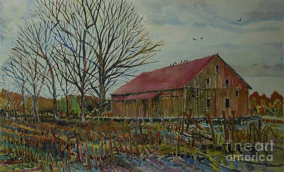 Gettysburg PA Area Barn by Donald McGibbon