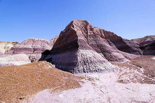 Adam Jewell - Giant Purple Mountain