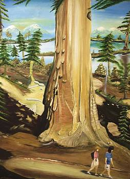 Giant Saquioa Tree by Miriam Sage