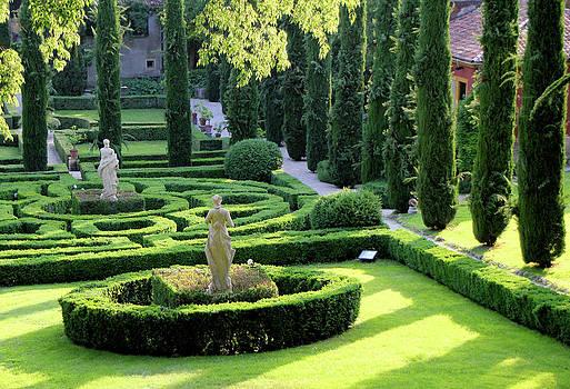 Giardini Giusti 2 by Vicki Hone Smith