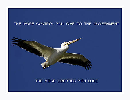 Randall Branham - give me Liberty