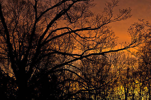 LeeAnn McLaneGoetz McLaneGoetzStudioLLCcom - Glowing Michigan sunset