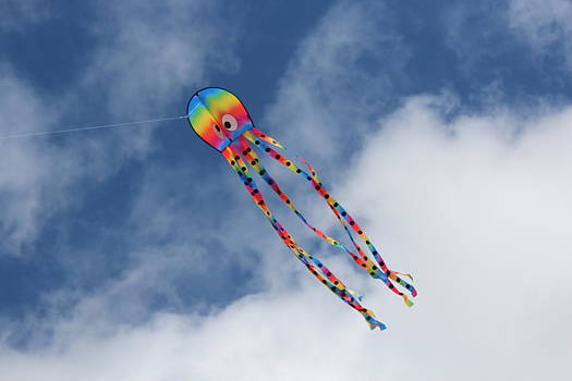 Go Fly a Kite by Andrew Ripley