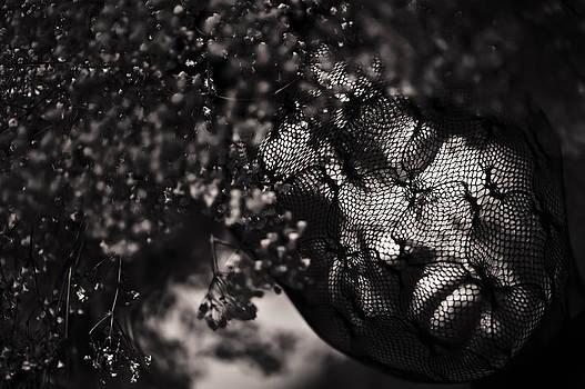 Goddess  by Andrew Kubica